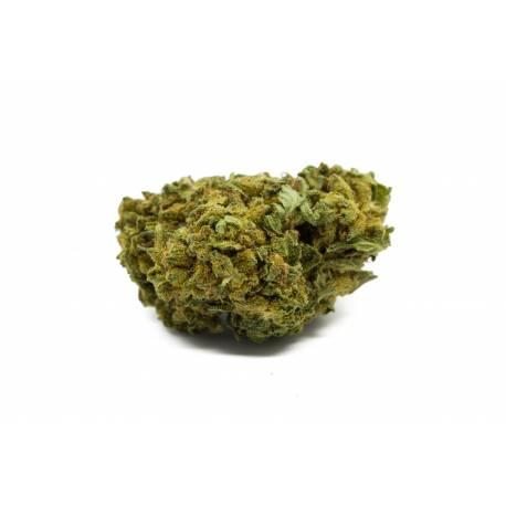 La fleur de CBD Ringo top qualité