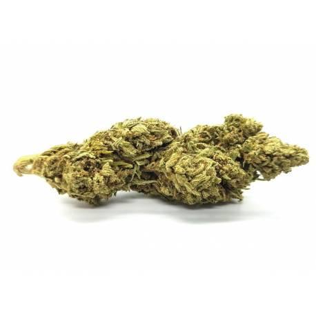 Les fleurs de CBD Sweet Pure - CBD top qualité