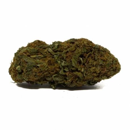 Les fleurs de CBD Gorilla Glue, top qualité
